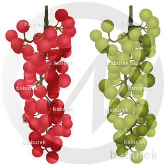 Grapes - red and green