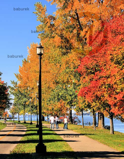 Autumn in Lachine