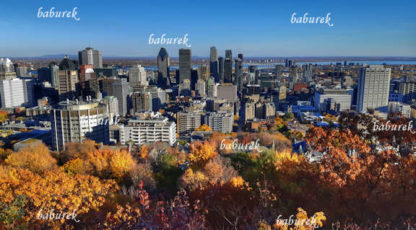 Autumn in Montreal