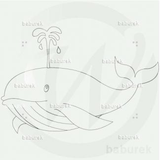 Whale drawing